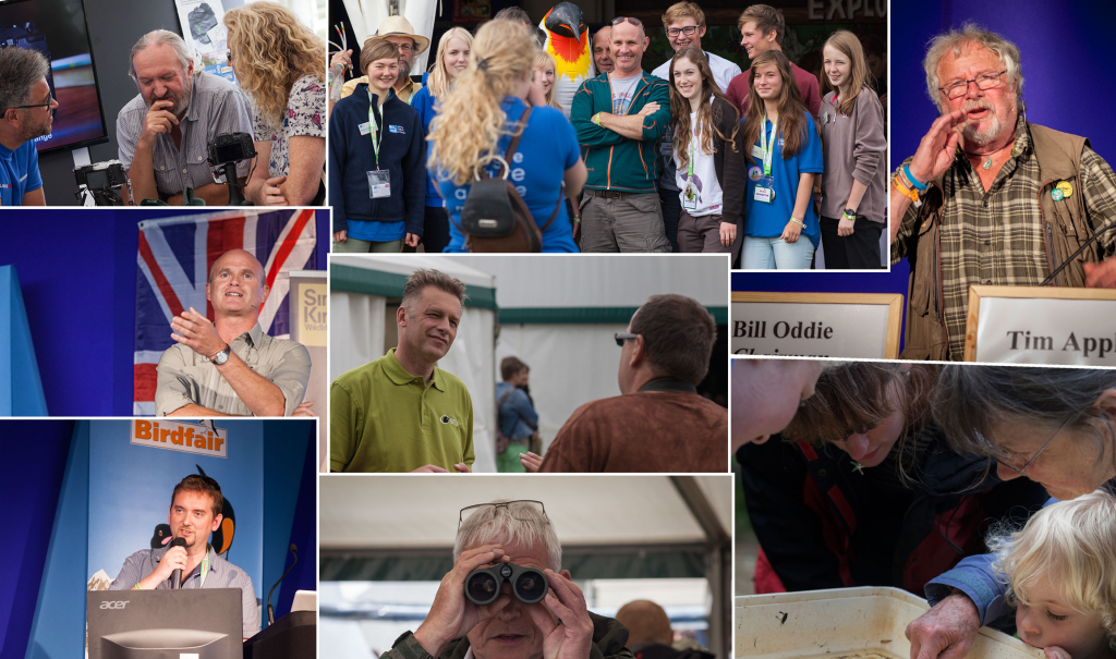 Some images from Day 2 of Birdfair 2014